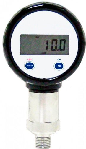 Цифровые манометры DM 10, модель ДСП-80